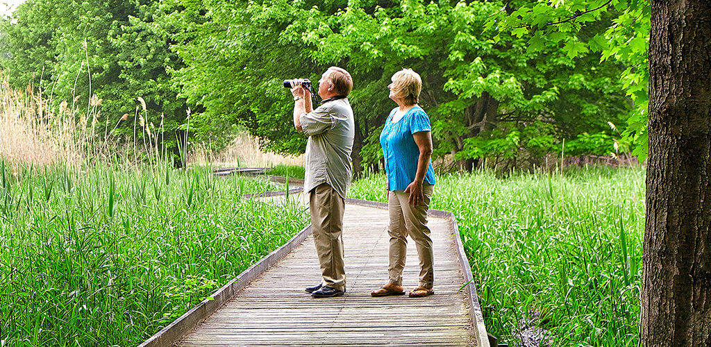 Couple watching for birds